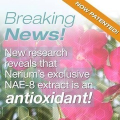 Nerium International Brand Partner Judy Rosengarten